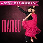 A Beginners Guide to: Mambo von Various Artists