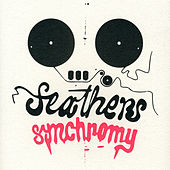 Synchromy by Feathers
