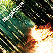 Gather, Form & Fly by Megafaun