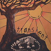 The Meaning of One by Transient