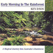 Early Morning In The Rainforest by Ken Davis