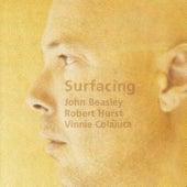 Surfacing by John Beasley