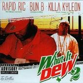 Whut It Dew 2 by Bun B
