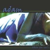 Shin Jin Rui by adam