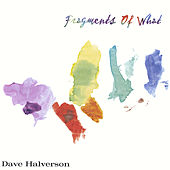 Fragments of What by Dave Halverson