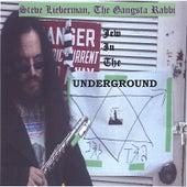 Jew In The Underground von Steve Lieberman
