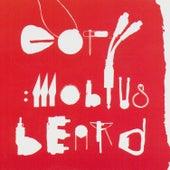 Mobius Beard by Copy