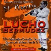 El Maestro by Lucho Bermúdez