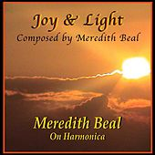 Joy & Light by Meredith Beal