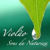 Violão e Sons da Natureza de Violão Specialist