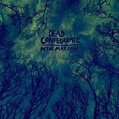 In The Marrow by Dead Confederate
