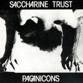 Paganicons by Saccharine Trust