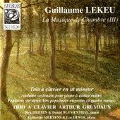Lekeu: La musique de chambre III by Various Artists