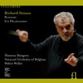 Strauss: Burleske & Ein Heldenleben by Plamena Mangova
