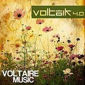 Voltaik 4.0 by Various Artists