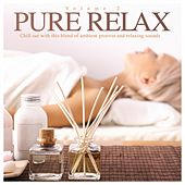 Pure Relax Vol. 2 by Various Artists