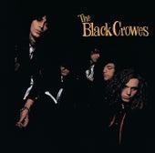 Shake Your Money Maker de The Black Crowes