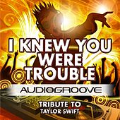 I Knew You Were Trouble by Audio Groove