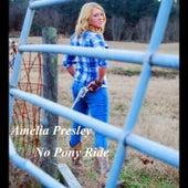 No Pony Ride by Amelia Presley