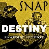 Destiny by Snap