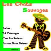 Toi l'étranger by Les Chats Sauvages