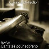 Bach : Cantates pour soprano de Paul Kuentz