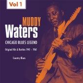 Country Blues, Vol. 1 de Muddy Waters