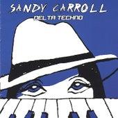 Delta Techno by Sandy Carroll