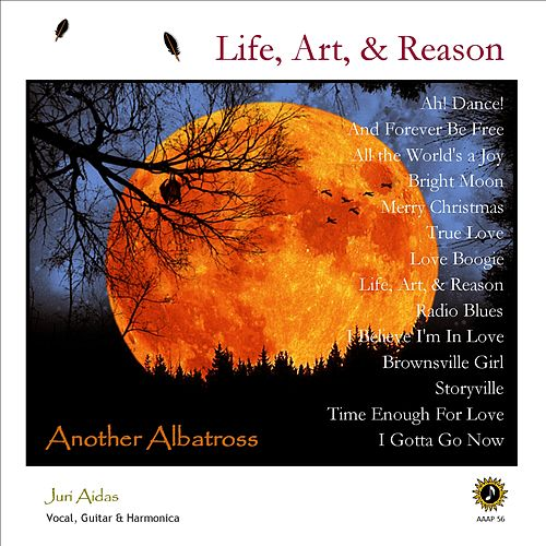 Life, Art & Reson by Another Albatross