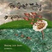 Shooting Laser Beams (Instrumentals) by The Secret Meeting