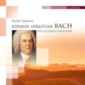 The Goldberg Variations by Nodar Gabunia