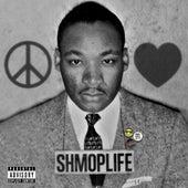 Peace, Love, Shmoplife de Kool John
