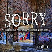 Sorry (In The Style Of T.I. feat. Andre 3000) - Single von Sorry