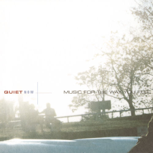 Quiet Now - Music For The Way You Feel by Various Artists