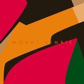 Made To Stray de Mount Kimbie