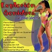 Explosion Sonidera: Cumbias Calientes [2002] by Various Artists