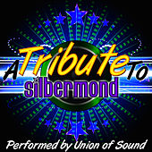 A Tribute to Silbermond von Union Of Sound