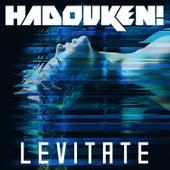 Levitate EP by Hadouken!