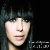 O Mistério de Teresa Salgueiro