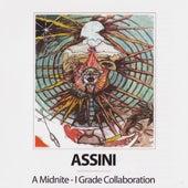 Assini by Midnite