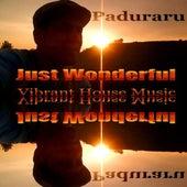 Just Wonderful (Vibrant Housemusic) de Various Artists