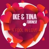 A Fool in Love de Tina Turner