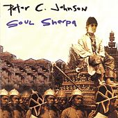 Soul Sherpa by Peter C. Johnson