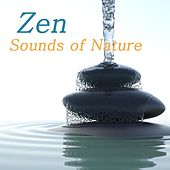 Zen Sounds of Nature: Nature Sounds Relaxation Meditation, Zen Music and Healing Sound Therapy van Zen Music Club