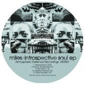 Introspective Soul EP de Miles