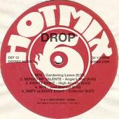Drop (hot Mix 6) von Various Artists