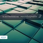 Elektronische Musikaspekte, Vol. 2 by Various Artists