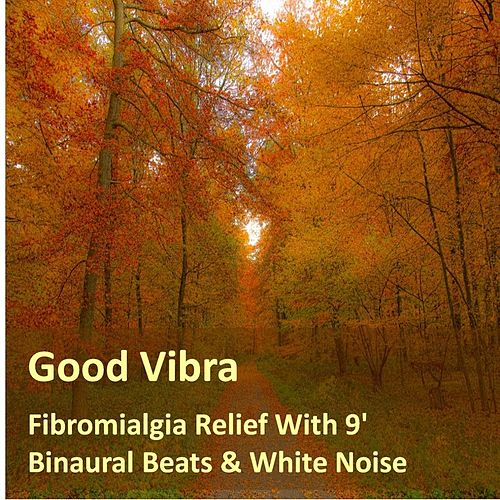 Fibromialgia Relief With 9' Binaural Beats & White Noise by Goodvibra