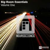 Big-Room Essentials - Volume One de Various Artists