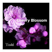 Cherry Blossom by Toshl